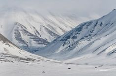 Arctic Landscape Fantasy Landscape, Winter Landscape, Arctic Landscape, Arctic Tundra, The Golden Compass, His Dark Materials, Story Of The World, Snowy Mountains, High Fantasy