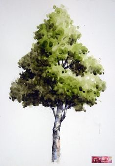 <기초 풍경수채화> 활엽수 - 수채화 과정 : 네이버 블로그 Tree Watercolor Painting, Watercolor Landscape Paintings, Landscape Drawings, Easy Watercolor, Floral Watercolor, Painting Art, Silhouette Painting, Tree Silhouette, Tree Sketches