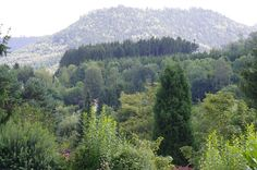 voilà notre campagne - les Vosges -  Lorraine