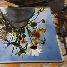 Wieder einmal ein Bild aus meinem #spiegelprojekt. Painting, Art, Perspective Photography, Mirrors, Projects, Life, Pictures, Art Background, Painting Art