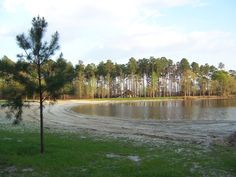 Lakepoint State Park AL - Google Search