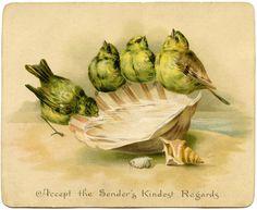 Graphic Image - Birds with Seashell Birdbath - The Graphics Fairy