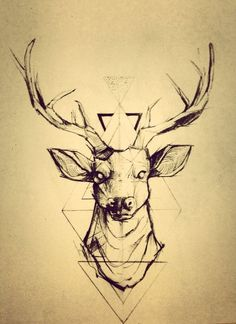 deer face drawing - Google Search