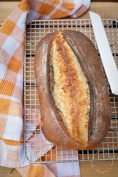Artisan Country Bread for World Bread Day - Jenny is baking