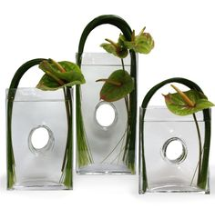 Arched Trio Arrangement with Antherium and Steel Grass - Floral Art