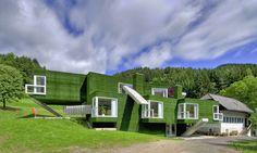 A fachada foi toda revestida com grama sintética    Casa verde | Reinhold Weichlbauer e Albert Josef Ortis