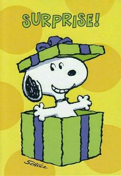 It's Snoopy Happy Birthday Gifs Snoopy, Snoopy Images, Snoopy Pictures, Snoopy Quotes, Peanuts Cartoon, Peanuts Snoopy, Snoopy Birthday, Happy Birthday, Phrase Cute
