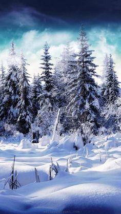 Rosamaria G Frangini | WinterBlues |