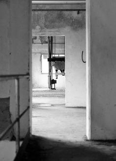 interno fabbrica abbandonata