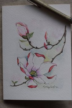 Pink Magnolia watercolor painting card-Original by SunsetPeonies: