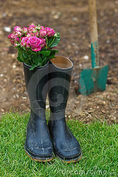 Bouquet of roses in gumboots by Madrabothair, via Dreamstime
