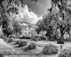 Bonaventure Cemetery  8x10 Infrared Print by WoodsInfrared on Etsy, $20.00