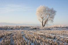 becilein: Winter time