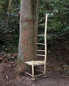 Part of Forest Furniture, 2004, an installation Loeser created in Darmstadt, Germany, in which he mounted segments of chairs and benches made out of saplings to existing trees.