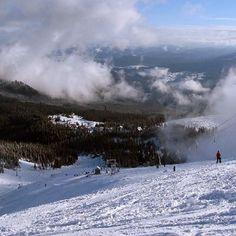 Гірськолижний курорт «Ясіня» розташований в досить великій за мірками Закарпаття селищі , який в зимовий період стає справжньою знахідкою...