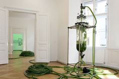no humans involved, but AWESOME alga installations by Thomas Feuerstein.