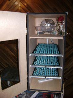 Vendo incubadoras automaticas y manuales