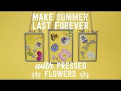 How to Make a DIY Flower Press - Way to Grow - HGTV - YouTube