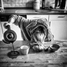 Are you looking for ideas for good morning coffee?Browse around this site for perfect good morning coffee ideas. These entertaining pictures will make you happy. Coffee Humor, Coffee Quotes, I Love Coffee, My Coffee, Monday Coffee, Coffee Pics, Coffee Ideas, Coffee Art, Really Funny