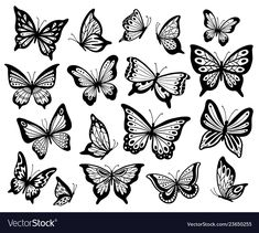 Stencil butterfly, moth wings and flying insects. Stencil butterfly, moth wings and flying insects. Butterfly Sketch, Butterfly Tattoo Meaning, Butterfly Tattoo On Shoulder, Butterfly Stencil, Butterfly Images, Butterfly Tattoo Designs, How To Draw Butterfly, Simple Butterfly, Monarch Butterfly