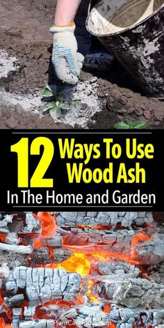 12 Ways To Use Wood Ash In The Home and Garden is part of Garden compost - 12 uses for wood ash in the garden and the home, help balance soil pH, deter slugs and snails, provide calcium for veggies, fertilize lawn [LEARN MORE] Garden Compost, Garden Soil, Lawn And Garden, Garden Plants, Home And Garden, Garden Modern, Garden Landscaping, Garden Weeds, Potager Garden