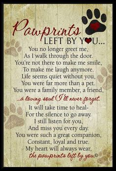 Beautiful words of sympathy for the loss of a dogs or cat. wall plaque featuring our Pawprints Left by You poem written by Teri Harrison. Our pet loss poem is the ideal gift for those coping with the loss of a pet. Pet Loss Quotes, Pet Quotes Dog, Lost Dog Quotes, Dog Death Quotes, Dog Loss Poem, Quotes For Dogs, Pet Memes, Dog Quotes Love, Dogue De Bordeaux