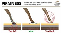 Video Explanation of How Arena Footing Affects the Biomechanics of a Horse's Stride