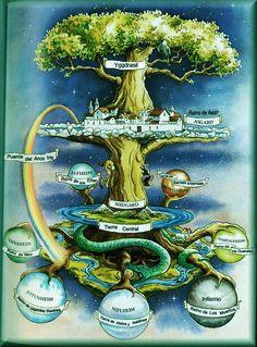 Yggdrasil. Fresno gigante que conecta los 9 mundos.A sus pies Heimdall se encarga de protegerlo del dragón Níðhöggr que trata de corroer sus raíces.Las nornas lo riegan con las aguas del pozo de Urd. Un puente unía el Yggdrasil con la morada de los dioses, el Bifröst o arco iris gracias al que los dioses entraban en el Midgard.