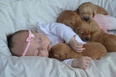 Growing up doesnrsquot have to be hard - especially when you have a pal pooch by your side.    We scoured the internet for the best photos of babies and their furry friends. Whether they are playing together, napping together, or simply being silly, these photos are proof of the special bond we share with dogs.   Check out these adorable photos, they are sure to warm your heart.