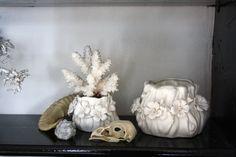 interior inspiration taxidermy bird skull coral flowerpot porcelain