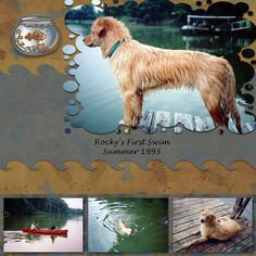 From my album, Matching Pets, made with Creative Memories StoryBook Creator Love the way the big pic is croped