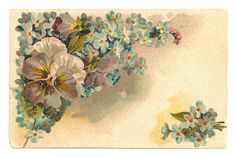 Antique Images: Free Flower Graphic: Vintage Postcard with Blue Flowers and Purple Pansies