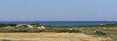 Lo scorso 3 settembre sono state avvistate 170 Garzette posate nel salicornieto e sulle macchie a lentisco che circondano la zona umida di fiume Morelli.
