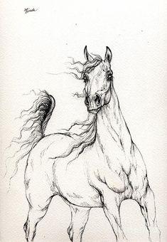 Arabian Horse  2014 02 25 Drawing by Angel  Tarantella