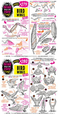 The Etherington Brothers: Photo Animal Sketches, Animal Drawings, Drawing Sketches, Art Drawings, Drawing Lessons, Drawing Techniques, Art Reference Poses, Drawing Reference, Character Art