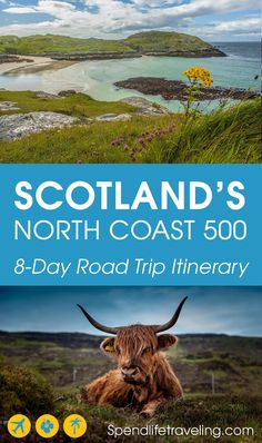 North Coast 500 Itinerary – Road Trip Along Scotland's North Coast Scotland's North Coast 500 is the perfect route for an incredible road trip with amazing scenery, historic castles and cute coastal towns. Scotland Travel Guide, Scotland Vacation, Scotland Road Trip, Camping Scotland, North Coast 500 Scotland, Perfect Road Trip, Excursion, Roadtrip, Traveling By Yourself