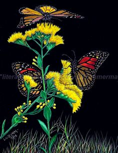 Three Butterflies on Flowers...my Butterfly Collection. Please visit @luzimmscratchart.com and browse my shop.