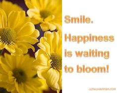 smile. Happiness is waiting to bloom!