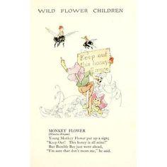 Wild Flower Children c1918 Monkey Flower Canvas Art - Janet Laura Scott (18 x 24)