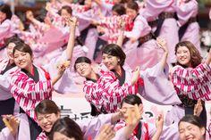 さくよさフォトコンテスト2016 結果発表   京都さくらよさこい