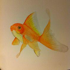 Goldfish 1. #watercolour