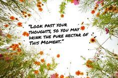 Inspiring Rumi Quotes
