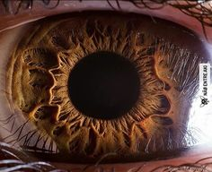 Olho humano em alta resolução