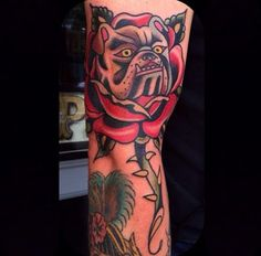 Bulldog Rose Tattoo by Eli Falconette Traditional Tattoo Forearm, Traditional Tattoos, Celtic Tribal, Bulldog Tattoo, American Traditional, Dog Tattoos, Old School, Tatting, Portland