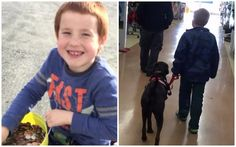 Aiden Heath wanted a service dog so badly, he spent half of his young life collecting pennies in order to save up for a special canine companion of his very own. The 8-year-old Vermont boy has type 1 diabetes, and when he …
