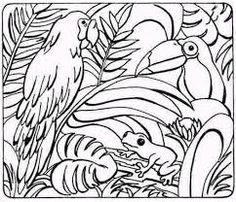 Rainforest Animal Colouring Sheets