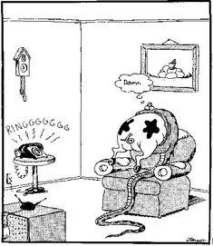 Image result for Gary Larson Cartoons Gallery