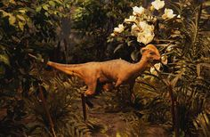Dinosaurs Were Heavy, Wet Breathers : Discovery News