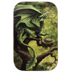 Age Of Dragons Forest Dragon Metal Tin - Something Different Wholesale