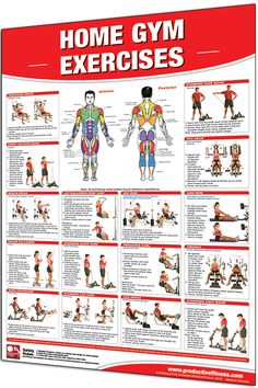 IRON COMPANY Productive Fitness Laminated Fitness Poster - Home Gym Exercises - x Wall Chart for Multi-Gym with Selectorized Weight Stack Gym Workout Chart, Ab Workout At Home, At Home Gym, At Home Workouts, Workout Routines, Exercise Chart, Total Gym Workouts, 300 Workout, Volleyball Workouts